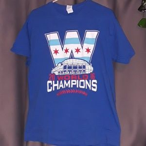Chicago cubs world champions tshirt